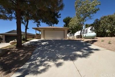 Lake Hughes Single Family Home For Sale: 42823 Limeridge Drive