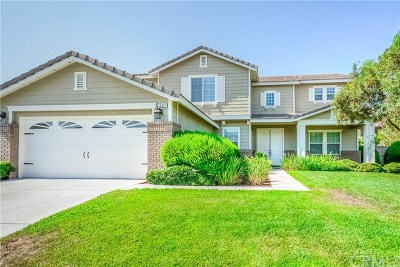 Corona Single Family Home For Sale: 531 Calderone Drive