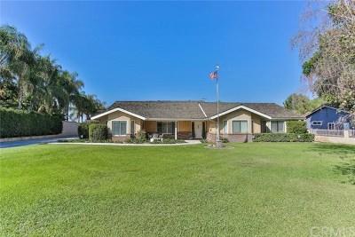Corona Single Family Home For Sale: 9060 Leroy Road