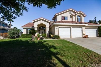 Corona Single Family Home For Sale: 1561 Cherokee Road