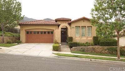 Corona Single Family Home For Sale: 23993 Augusta Drive