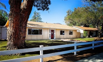 Wildomar Single Family Home For Sale: 21635 Grand Avenue