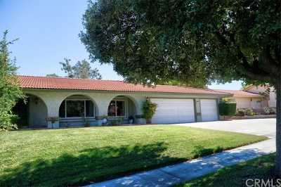 Redlands Single Family Home For Sale: 141 Calle Constancia