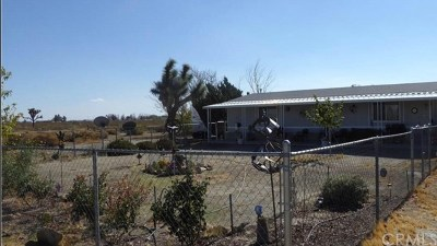 El Mirage Single Family Home For Sale: 19665 Grey Mountain Road
