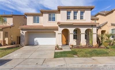 Lake Elsinore Single Family Home For Sale: 31007 Sedona Street