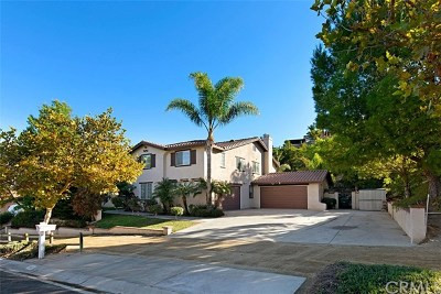 Norco Single Family Home For Sale: 1553 Harness Lane