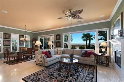 Corona Single Family Home For Sale: 9120 Larkspur Drive