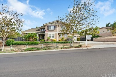 Norco Single Family Home For Sale: 1271 Rock Springs Avenue