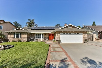 Norco Single Family Home For Sale: 5398 Trail Street