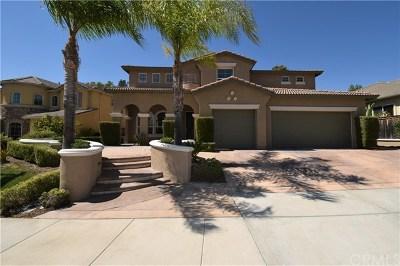 Temecula Single Family Home For Sale: 31956 Calle Caballos