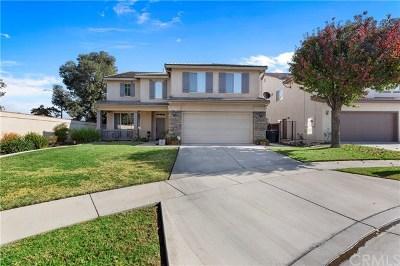 Corona Single Family Home For Sale: 2515 Rainbow Falls Circle