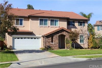 Corona Single Family Home For Sale: 564 Harding Road