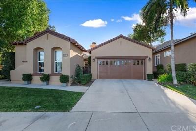 Corona Single Family Home For Sale: 24401 Fawnskin Drive