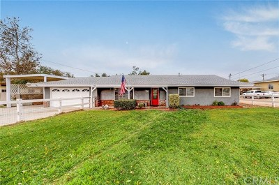 Norco Single Family Home For Sale: 927 4th Street