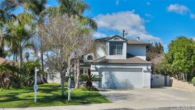 Colton Single Family Home For Sale: 981 Latham Street