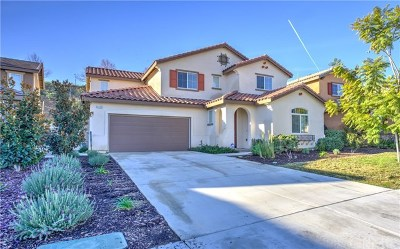 Lake Elsinore Single Family Home For Sale: 4123 Pearl Street