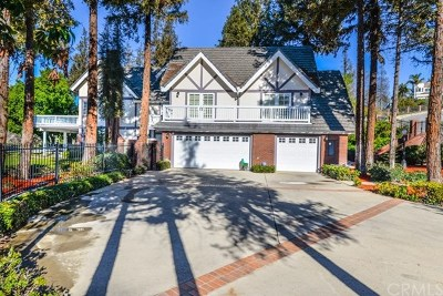 Walnut Single Family Home For Sale: 985 Ironshoe Court