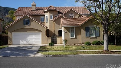 Corona Single Family Home For Sale: 978 W Orange Heights Lane