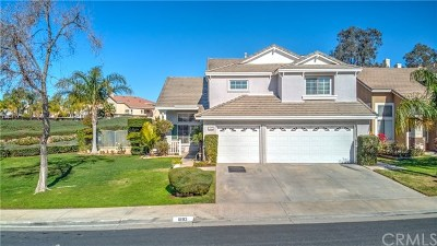 Corona Single Family Home For Sale: 1893 Stonehaven Drive