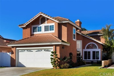 Jurupa Single Family Home For Sale: 5603 El Palomino Drive