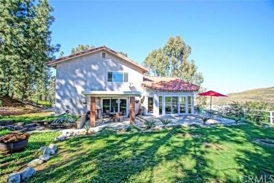 Corona Single Family Home For Sale: 7170 Bel Air Street