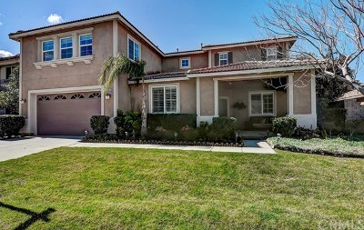 Corona Single Family Home For Sale: 3570 Elker Road