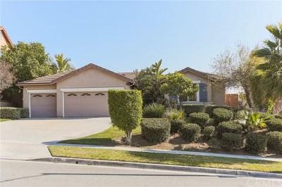 Corona Single Family Home For Auction: 651 Brianna Way