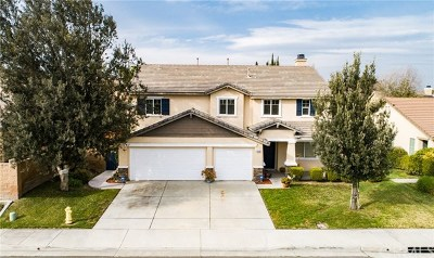 Eastvale Single Family Home For Sale: 13732 Sandhill Crane Road