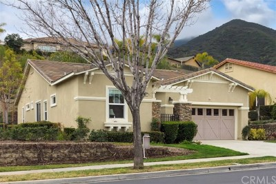 Corona Single Family Home For Sale: 8819 Larkspur Drive