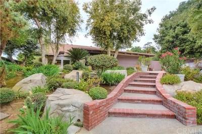 Pomona Single Family Home For Sale: 1591 McLeod Place