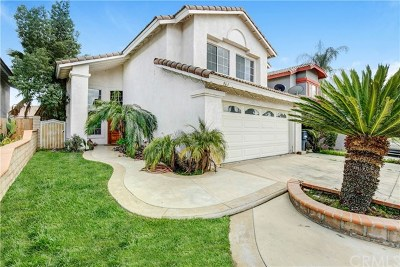 Perris Single Family Home For Sale: 963 Dolphin Drive