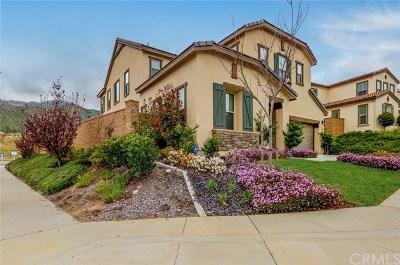 Corona Single Family Home For Sale: 11329 Hutton Road