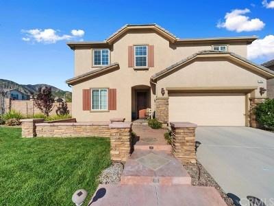 Corona Single Family Home For Sale: 25857 Dove Street
