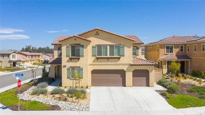 Lake Elsinore Single Family Home For Sale: 36640 Daffodil Court