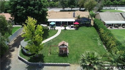 Corona Single Family Home For Sale: 9074 Leroy Road