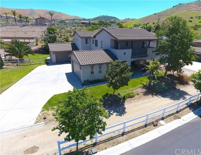 Norco Single Family Home For Sale: 3121 Cavaletti Lane