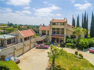 Upland Single Family Home For Sale: 2520 San Antonio Crescent E