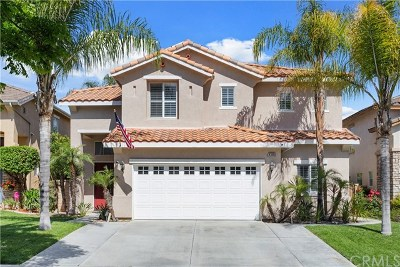 Corona Single Family Home For Sale: 4386 Driving Range Road
