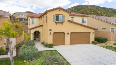 Lake Elsinore Single Family Home For Sale: 36403 Yarrow Court