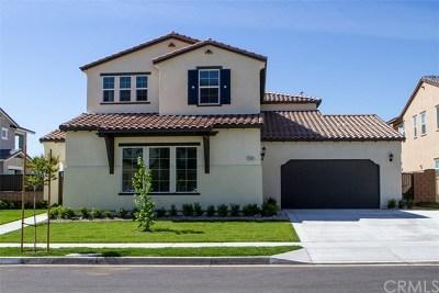 Rancho Cucamonga Single Family Home For Sale: 12411 Alamo Drive
