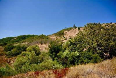 Temecula Residential Lots & Land For Sale: Camino Estribo