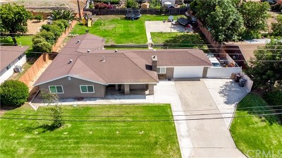 Norco Single Family Home For Sale: 2104 Alhambra Street