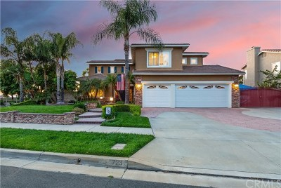 Corona Single Family Home For Sale: 723 Sky Ridge Drive