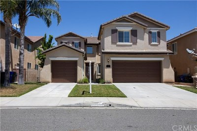 Castaic Single Family Home For Sale: 29095 Madrid Place