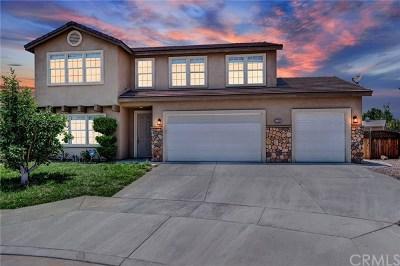 Hemet, San Jacinto Single Family Home For Sale: 1744 Tustin Court