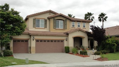 Menifee Single Family Home For Sale: 29204 Loden Circle
