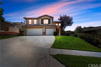Yucaipa Single Family Home For Sale: 34337 Oakwood Place
