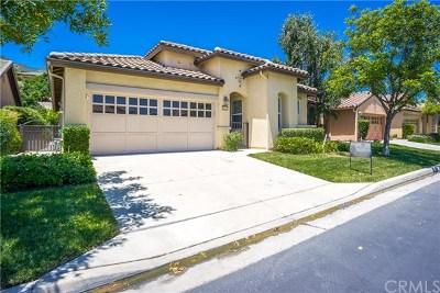 Corona Single Family Home For Sale: 24633 Littlehorn Drive