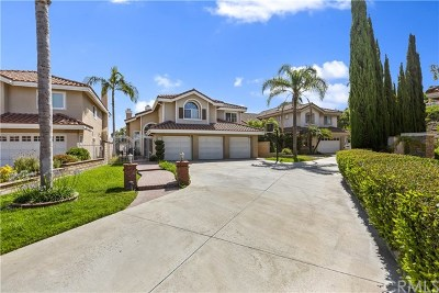 Anaheim Hills Single Family Home For Sale: 493 S Laureltree Drive