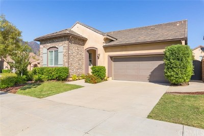 Corona Single Family Home For Sale: 10850 Cameron Court